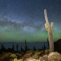 Green Airglow And Cactus Incahuasi Island Bolivia by James Brunker
