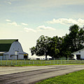 Green And White Farm by Cricket Hackmann