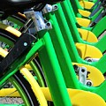 Green And Yellow Bicycles by Bill Tomsa