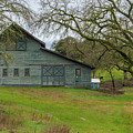 Green Barn #2 by Robin Mayoff
