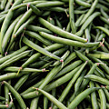 Green Beans by Kendra Susan