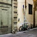 Green Bike And Door by Aashish Vaidya
