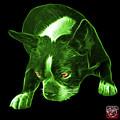 Green Boston Terrier Art - 8384 - Bb by James Ahn