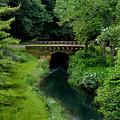 Green Bridge by Martin Massari