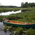 Green Canoe And Nh Marsh by Betsy Derrick