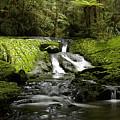 Green Cascade by Peter Prue