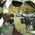 Green Collage 1 by Shelby Wilson