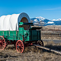Green Covered Wagon by Paul Freidlund