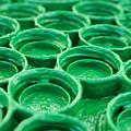 Green by Dan Holm