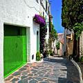 Green Door Passage  by Harry Spitz