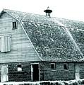 Green Field Barn by Julie Hamilton