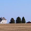 Green Fields Coming by Ann Horn