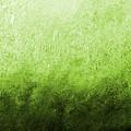 Green Fire by Giro  Tavitian