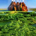 Green Fly Geyser by Inge Johnsson
