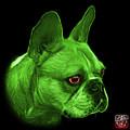 Green  French Bulldog Pop Art - 0755 Bb by James Ahn