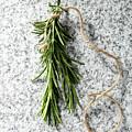 Green Fresh Rosemary On Granite Background by Piotr Marcinski