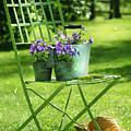 Green Garden Chair by Sandra Cunningham
