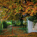 Green Gate To Autumn Paradise by James Truett