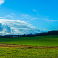 Green Grass And Blue Sky With White Clouds by Valery Rudnev