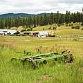 Green Grass Grew All Around by Tom Cochran