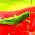 Green Grasshopper by MJ Arts Collection