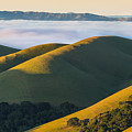 Green Hills And Low Clouds by Marc Crumpler