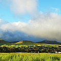 Green Hills Of Waimea by Charmian Vistaunet