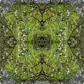 Green Mandala by Viktor Savchenko