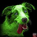 Green Merle Australian Shepherd - 2136 - Bb by James Ahn