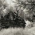 Green Mountain Cabin by Bill Kellett