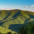 Green Mountainside by Shanna Robillard