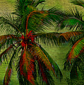 Green Palms by Perry Webster