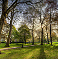 Green Park London by David Pyatt