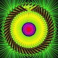Green Parrot Mandala by The Awakening Art