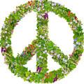 Green Peace Symbol From  Spring Plants by Aleksandr Volkov