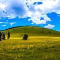 Green Peak Yellow by Len Morales Jr