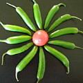 Green Pepper Design by Jeanette Oberholtzer