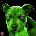 Green Pitbull Puppy Pop Art - 7085 Bb by James Ahn