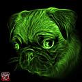 Green Pug -  9567 Fs B by James Ahn