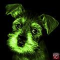 Green Salt And Pepper Schnauzer Puppy 7206 F by James Ahn
