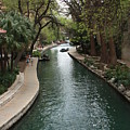 Green San Antonio River by Carol Groenen