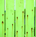 Green Seaside Fence by Mark Summerfield