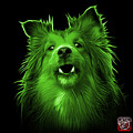 Green Sheltie Dog Art 0207 - Bb by James Ahn