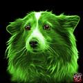 Green Shetland Sheepdog Dog Art 9973 - Bb by James Ahn