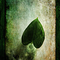 Green Simplicity by Randi Grace Nilsberg
