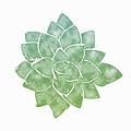 Green Succulent 1- Art By Linda Woods by Linda Woods