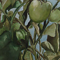 Green Tomatoes On The Vine by Charme Curtin