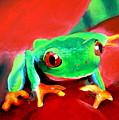 Green Tree Frog by Tania Kay