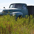 Green Truck In The Green Grass by Ed Mosier