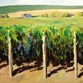 Green Vineyards Of Napa by Wyn Ericson